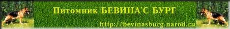 Питомник БЕВИНА'С БУРГ - немецкие овчарки и бигли