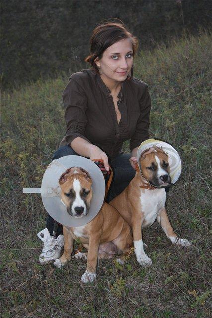 Кира, Мегги и их человеческие питомцы стафф стайл стаффордширский терьер