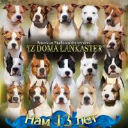 Отправить личное сообщение Iz_Doma_Lankaster